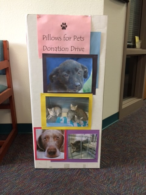 Pillows for Pets Donation Box