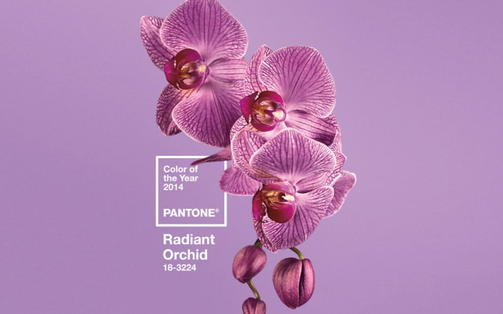 Photo courtesy of Pantone.com
