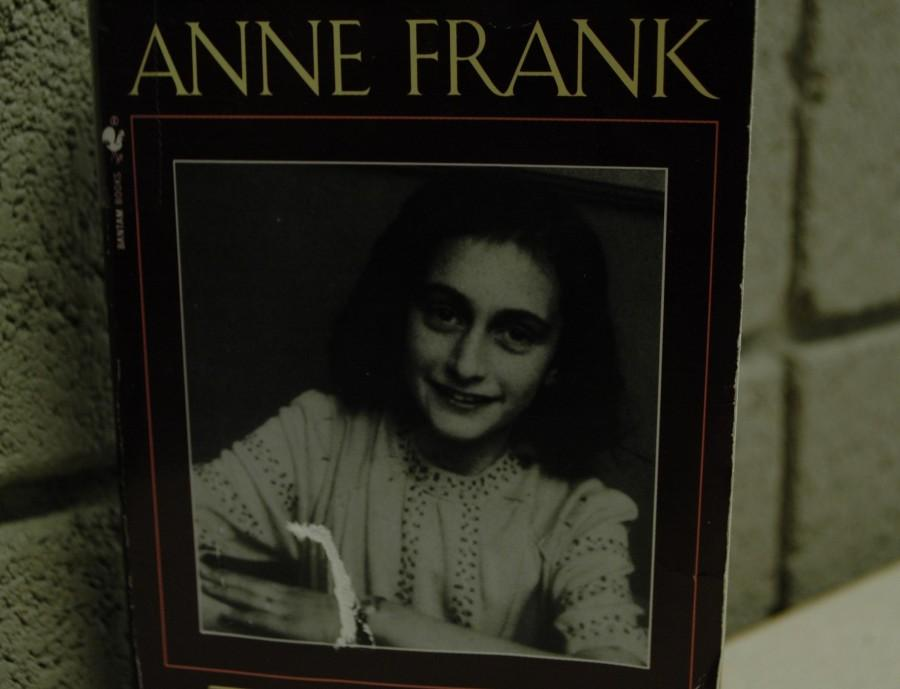 The Diary of Anne Frank has been read in schools for years. It follows the problems of a young Jewish girl during the Holocaust.