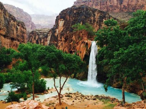 Havasupai Falls is a gorgeous destination deep within the Grand Canyon. It's unnaturally blue waters and pristine wildlife make it a must-see destination in Arizona.