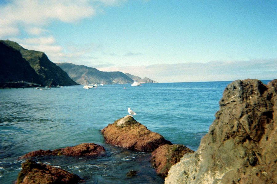 You can faintly see a seagull sitting on a rock with the island's mountains in the distance.