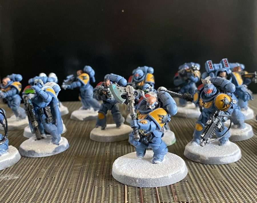 Space wolves from Warhammer.