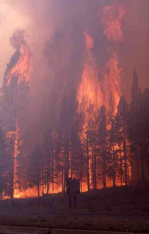 The 1988 fires in Yellowstone National Park.
