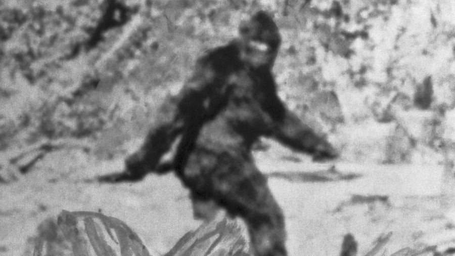 Urban legends such as that of Bigfoot can persist for many years.