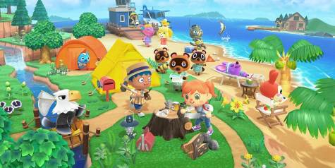 "An update on year one of ""Animal Crossing: New Horizons."""