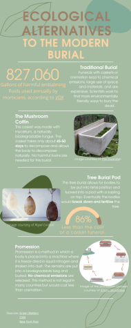 Environmentally-Friendly Burial Solutions